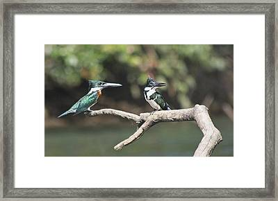 Never Leave Your Side Framed Print
