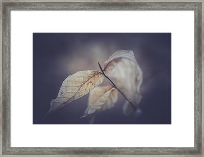 Never To Fall Framed Print