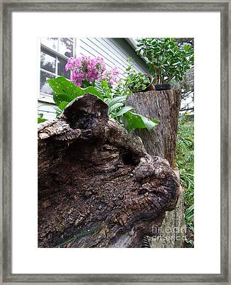 New And Old Framed Print by The Stone Age