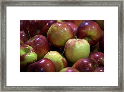 New Apples Framed Print by Joseph Skompski