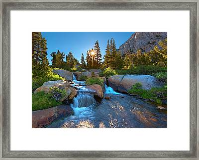 New Beginnings Framed Print by Brian Knott - Forget Me Knott Photography