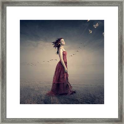 New Beginnings Framed Print by Johan Swanepoel