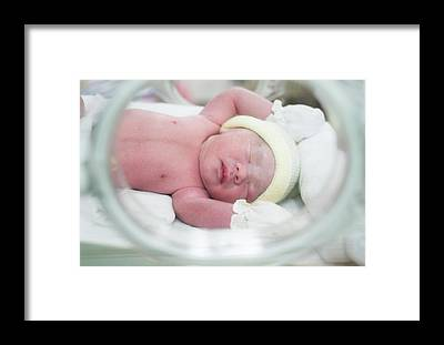 Preemie Framed Prints