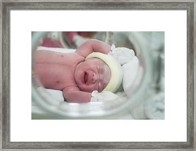 New Born Baby In Hospiatal Framed Print by Anek Suwannaphoom