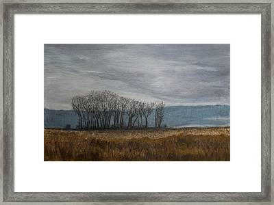 New Buffalo Marsh Framed Print