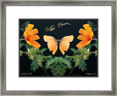 New Creation Framed Print by Greg Taylor