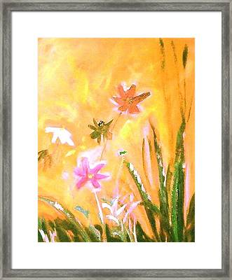New Daisies Framed Print