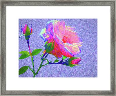 New Dawn Painterly Framed Print by Susan Lafleur
