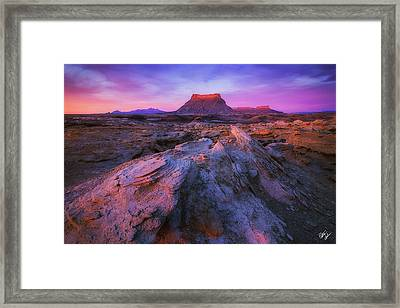 New Day Framed Print by Peter Coskun