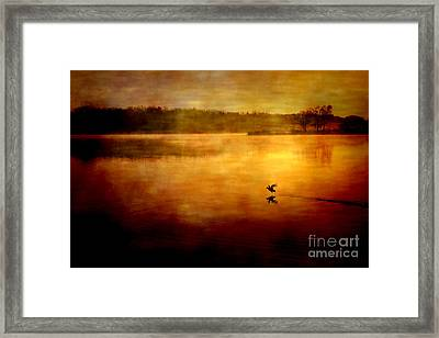 New Day Surrounded By Nature Framed Print by Iris Greenwell