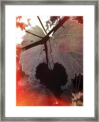 New Day Framed Print by Wayne Sherriff