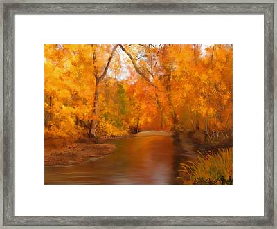 New England Autumn In The Woods Framed Print