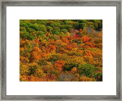 New England Fall Foliage Peak  Framed Print by Juergen Roth