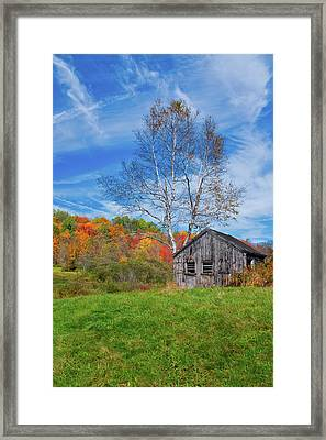 New England Fall Foliage Framed Print