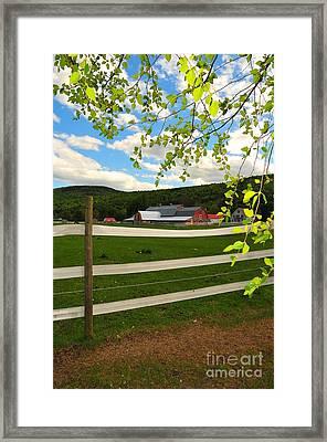 New England Farm Framed Print