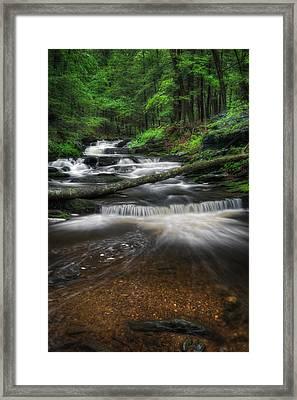 New England Mountain Stream Portrait Framed Print