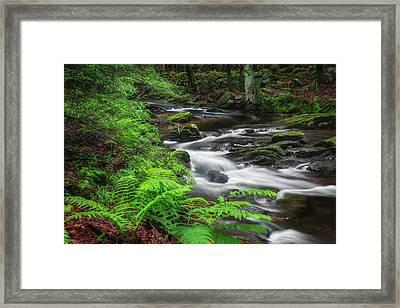 New England Spring Stream Framed Print by Bill Wakeley