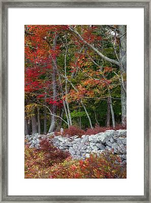 New England Stonewall Framed Print