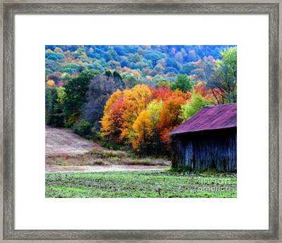 New England Tobacco Barn In Autumn Framed Print
