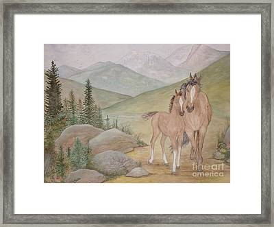 New Foal In The Foothills Framed Print