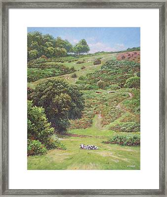 Framed Print featuring the painting New Forest Hill With Cows And Horses by Martin Davey