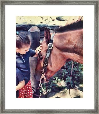 New Friends Framed Print by JAMART Photography