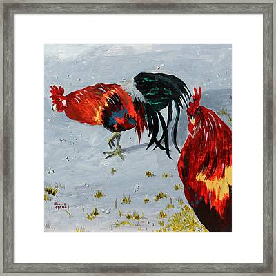 New Harmony Roosters Framed Print by Jaime Haney