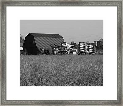 New Holland Bale Wagons Framed Print by Troy Montemayor