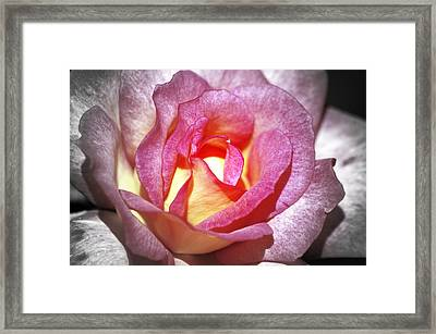 New Hope Framed Print