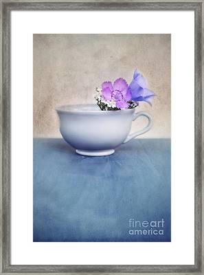 New Life For An Old Coffee Cup Framed Print by Priska Wettstein