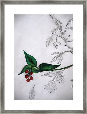 New Life Framed Print by Irum Iftikhar