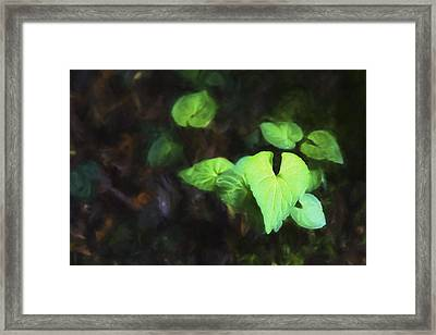 New Light II Framed Print
