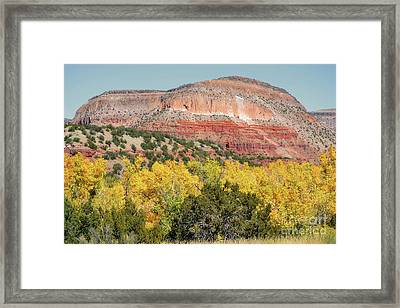 New Mexico Jemez Mountains Fall Foliage Landscape Framed Print by Andrea Hazel Ihlefeld