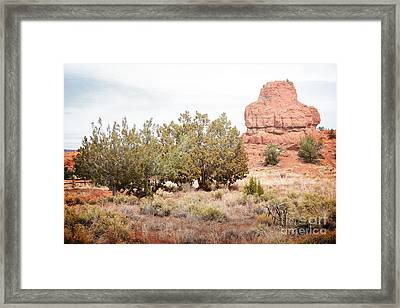 New Mexico Jemez Mountains Red Rock Field Landscape Framed Print by Andrea Hazel Ihlefeld