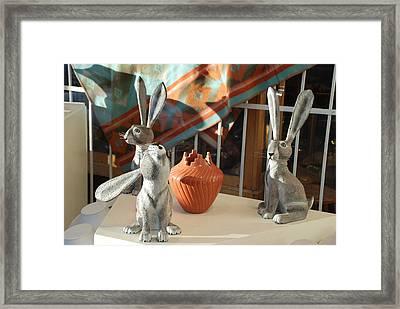 New Mexico Rabbits Framed Print by Rob Hans