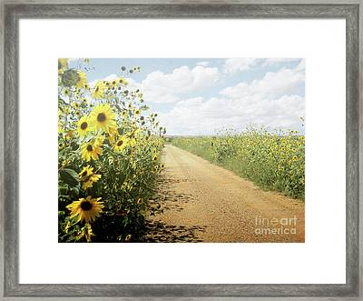Framed Print featuring the photograph New Mexico Sunflower Road by Andrea Hazel Ihlefeld