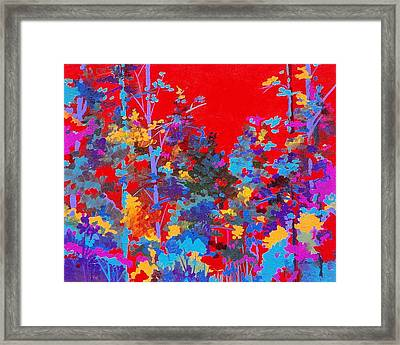 New Mexico Woods Framed Print