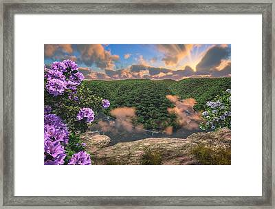 New River Gorge Grandview Framed Print by Mary Almond