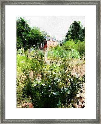 New Roots Framed Print by Claire Bull