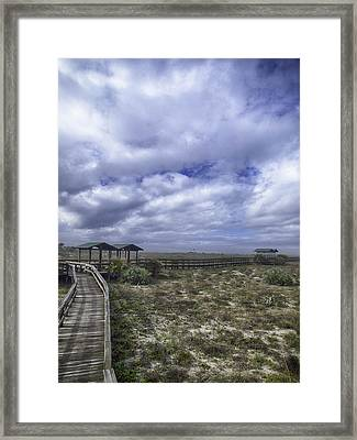 New Smyrna Beach Dunes Framed Print
