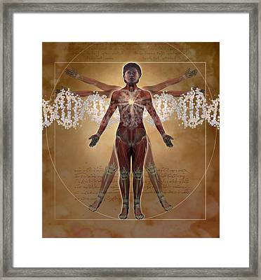 New Vitruvian Woman Framed Print by Jim Dowdalls and Photo Researchers