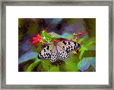 New World Coming To Life Framed Print by James Steele