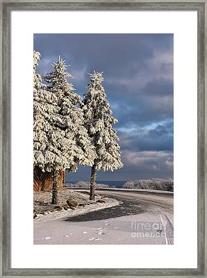 New Year's Day Framed Print