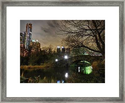 New York - Central Park 006 Framed Print