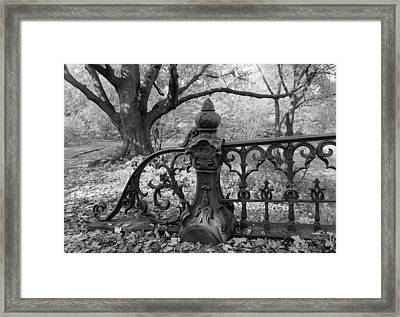 New York City,  Central Park, Bridge Framed Print