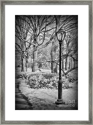 New York City - Winter - Central Park Framed Print by Paul Ward