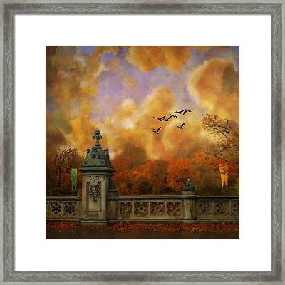 New York Fall - Central Park Framed Print by Jeff Burgess