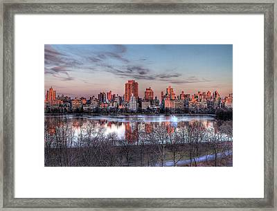 New York Spring Awakening Framed Print by Ariane Moshayedi