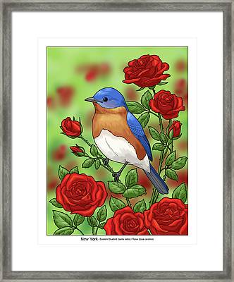 New York State Bluebird And Rose Framed Print by Crista Forest