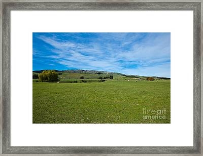 New Zealand Green Rolling Hills Framed Print by John Buxton